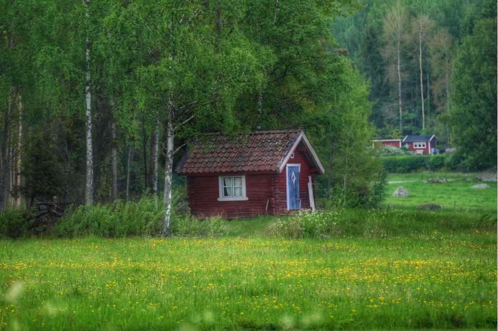 A small red cottage in summer. Photo by Katharina Svensson Vikström